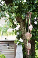 Large pebbles in plant hangers suspended from tree
