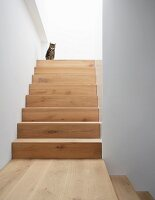 Cat sitting on landing of wooden staircase