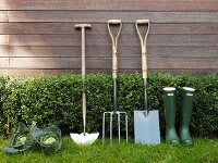 Gardening utensils and Savoy cabbage in front of wooden house façade