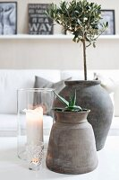Plants in grey clay pots and glass candle lanterns