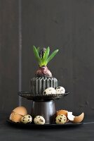 Easter arrangement of hyacinth, various eggs and egg shells on black cake stand