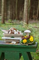 Button mushrooms on scales and wooden toadstool on arrangement of moss and flowers