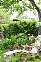 Wooden lounger and flowering tulips in garden