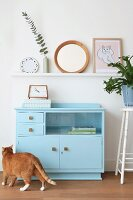 Cat in front of old cabinet painted blue below ornaments on narrow shelf