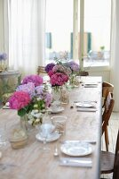 Several vases of hydrangeas on set table