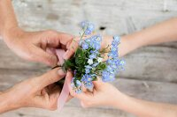 Hands holding posy of forget-me-nots