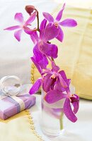 Orchids in glass of water next to wrapped gift