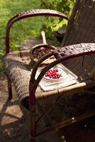 Cranberries and shallots on garden chair