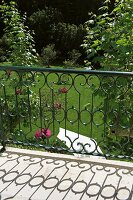 Metal balcony balustrade of curved wrought iron rods and view into well-tended garden