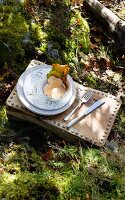 Wild mushroom and autumn leaf in dish on wooden stool with decorative rivets on sunny, mossy woodland floor