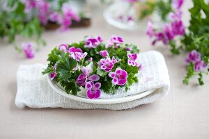 Wreath of scented pelargoniums decorating table