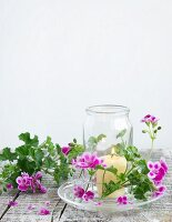 Candle lantern with lit candle & scented pelargoniums