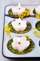 Bun tin used as candle holder with coloured gravel & mimosa flowers