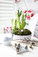 White potted hyacinths behind china rabbit and quail eggs in holder
