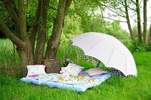 Food and crockery on picnic blanket below open parasol below tree