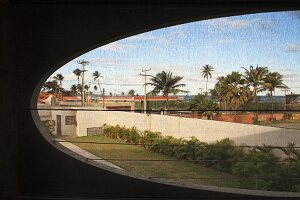 Oval window aperture in concrete facade with view of palm trees in urban setting