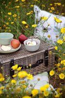 Yellow wild flowers, picnic basket, crockery and apples