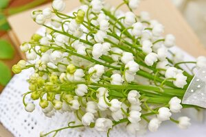 Bouquet of lily-of-the-valley