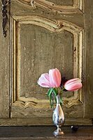 Pink tulips in silver vase in front of antique, carved cabinet door