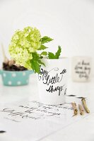 Hydrangea in vase with black lettering