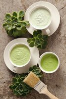 Green creamy paints in white ceramic teacups arranged with succulents and paintbrush