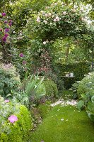 Lawn path leading through rose arch in idyllic garden