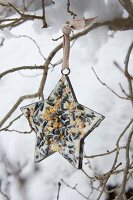Star-shaped pastry cutter filled with bird cake hanging from branch
