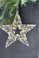 Wooden star filled with bird cake made from coconut oil and sunflower seeds