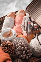 Pine cones and winter picnic in old suitcase