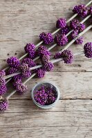Branch of purple beautyberry on rustic wooden table