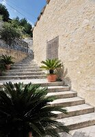 Potted plant on exterior steps running along façade of Mediterranean house