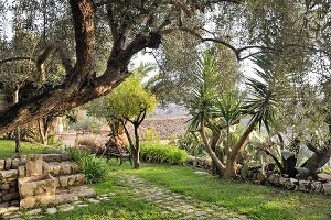 Water spout, bench and palm trees in Mediterranean garden