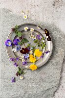 Edible flowers (dandelion, violet, viola, daisy, ground ivy)