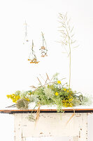 Various wild flowers on table and on wall