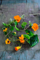 Nasturtium leaves and flowers on wooden surface