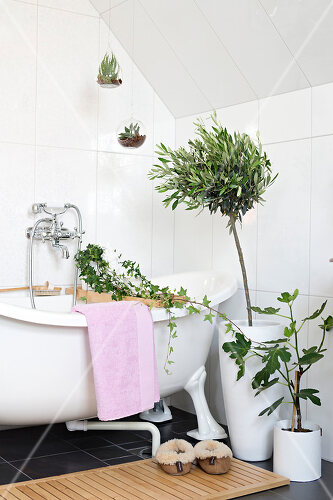 Flowers in the bathroom add charm and flourish in the warm damp atmosphere