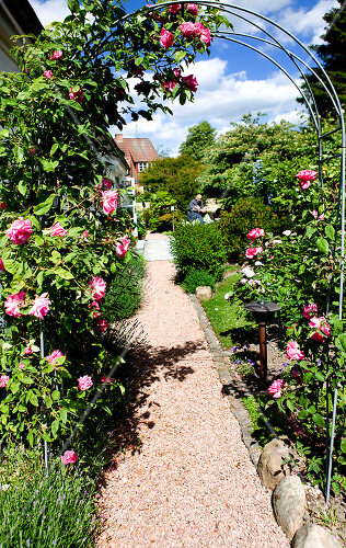Danish garden features perennial beds and roses