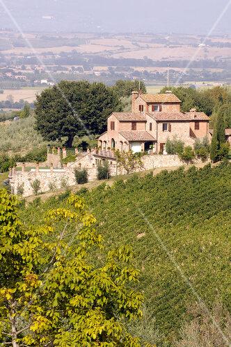 Eine Villa in den Weinbergen bei Montepulciano mit atemberaubendem Ausblick