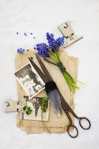Stillleben aus Heute & Gestern, Blumen, Fotos und Kuchen