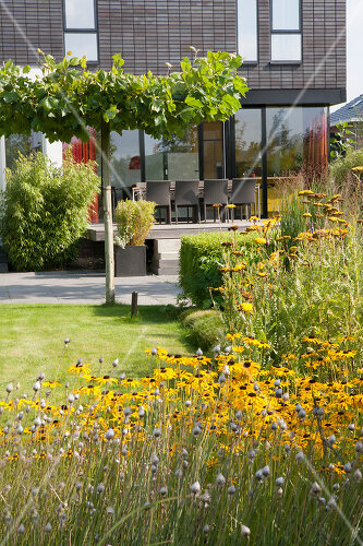 The garden that created the home in Almere, Holland