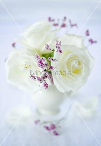 weisse rosen in vase bild kaufen living4media. Black Bedroom Furniture Sets. Home Design Ideas