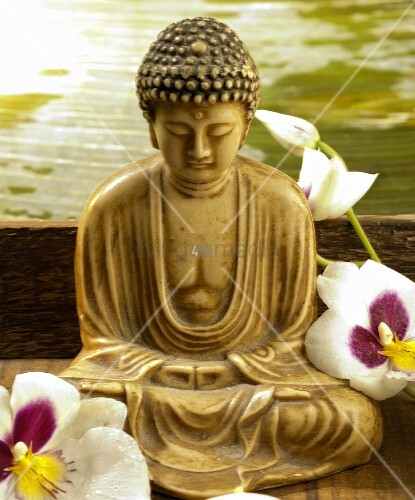buddha statue and orchid flowers bild kaufen living4media. Black Bedroom Furniture Sets. Home Design Ideas
