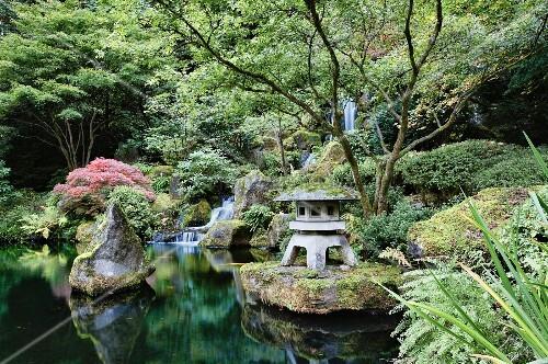 meditativer teich mit kaskaden wasserfall im japanischen. Black Bedroom Furniture Sets. Home Design Ideas