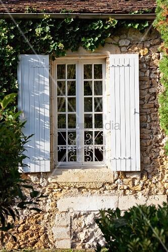sprossenfenster mit weissen holzl den in berankter. Black Bedroom Furniture Sets. Home Design Ideas