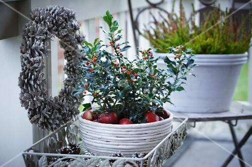 weihnachtsdeko auf der terrasse kranz aus pinienzapfen ilex und erika in blument pfen bild. Black Bedroom Furniture Sets. Home Design Ideas