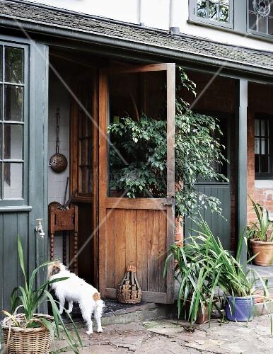 Offene haustür  Ausschnitt eines Landhauses – Blumentöpfe auf Terrassenboden aus ...