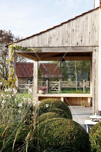 formgeschnittene buchsbaumkugeln vor anbau aus holz mit. Black Bedroom Furniture Sets. Home Design Ideas