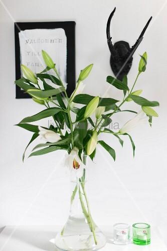 weisse lilien in glasvase und windlichter auf weisser ablage an wand tiertroph e neben bild. Black Bedroom Furniture Sets. Home Design Ideas