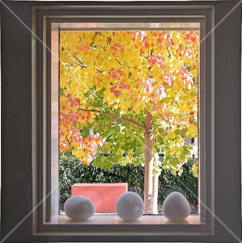 Goldener herbst deko steine auf fensterbrett und blick - Fensterbrett deko ...