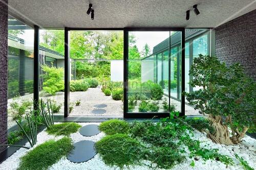 Indoor garden in vestibule with ground cover plants and tree amongst white pebbles and view of - Indoor garten ...